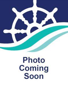 placeholder image for missing employee headshot
